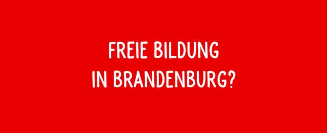 Wahlprüfsteine zur Landtagswahl in Brandenburg